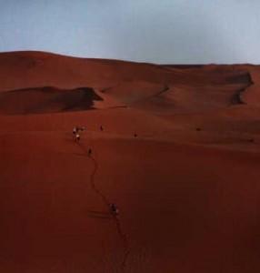 BigMama Sand Dune