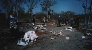 Elephant Grave Yard